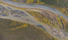Taking on the Yukon Wilderness